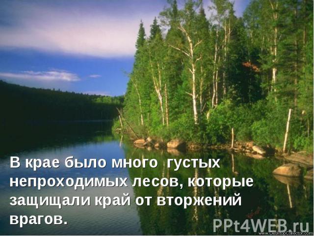 В крае было много густых непроходимых лесов, которые защищали край от вторжений врагов.