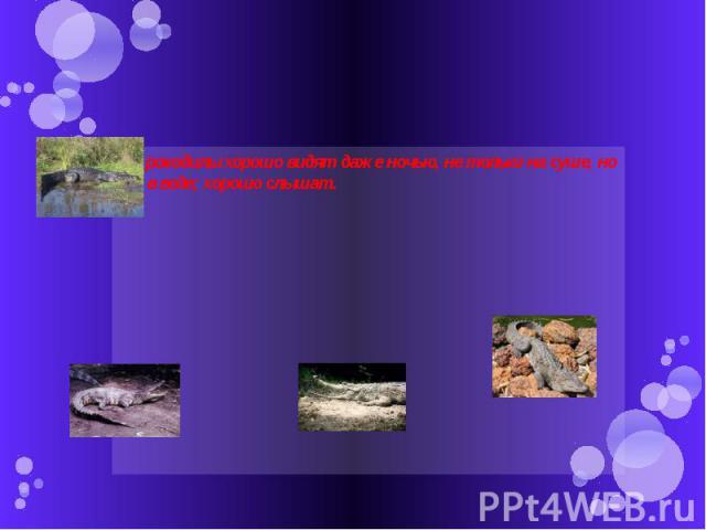 Крокодилы хорошо видят даже ночью, не только на суше, но и в воде; хорошо слышат.