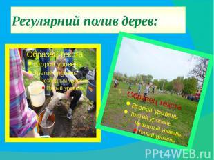 Регулярний полив дерев: