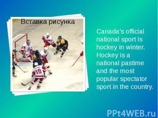 Canada's official national sport is hockey in winter. Hockey is a national pasti