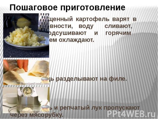 Пошаговое приготовление Очищенный картофель варят в воде до готовности, воду сливают, картофель подсушивают и горячим протирают, затем охлаждают. Сельдь разделывают на филе. Сельдь и репчатый лук пропускают через мясорубку.
