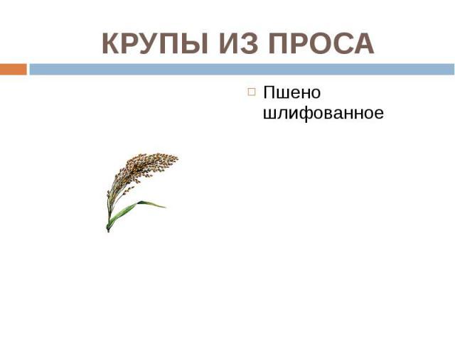 Пшено шлифованное Пшено шлифованное