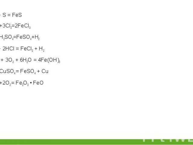 Fe + S = FeS Fe + S = FeS 2Fe+3Cl2=2FeCl3 Fe+H2SO4=FeSO4+H2 Fe + 2HCl = FeCl2+ H2 4Fe + 3О2 + 6Н2О = 4Fe(ОН)3 Fe+CuSO4= FeSO4 + Cu 3Fe+2O2= Fe2O3 • FeO