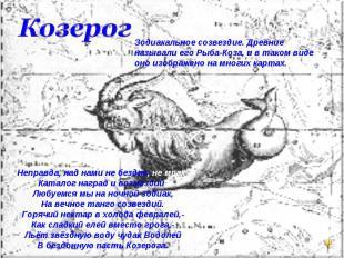 КозерогЗодиакальное созвездие. Древние называли его Рыба-Коза, и в таком виде он
