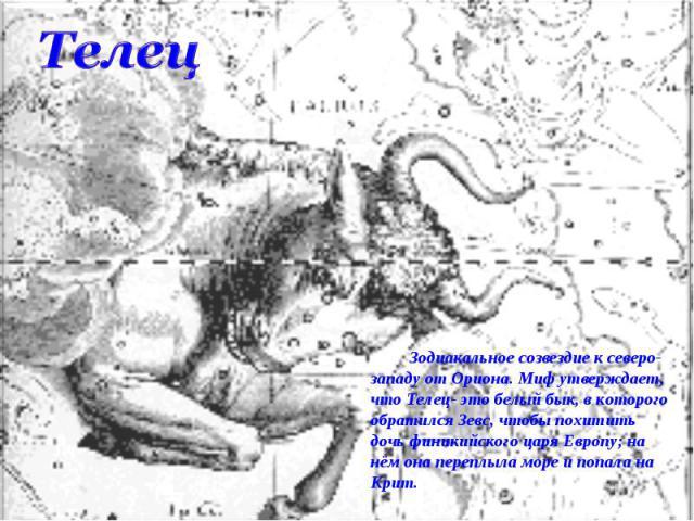Телец Зодиакальное созвездие к северо-западу от Ориона. Миф утверждает, что Телец- это белый бык, в которого обратился Зевс, чтобы похитить дочь финикийского царя Европу; на нём она переплыла море и попала на Крит.