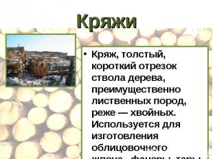 Кряжи Кряж, толстый, короткий отрезок ствола дерева, преимущественно лиственных
