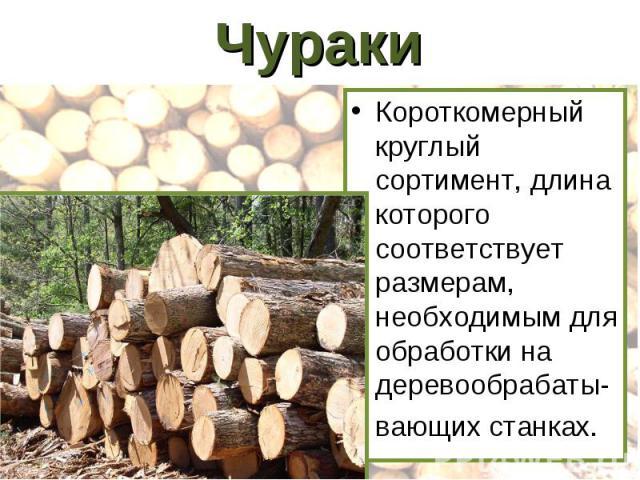 Чураки Короткомерный круглый сортимент, длина которого соответствует размерам, необходимым для обработки на деревообрабаты-вающих станках.