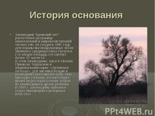 """История основания Заповедник """"Брянский лес"""" расположен на границе южнотаежной и"""