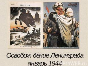 Освобождение Ленинградаянварь 1944