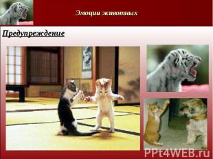 Эмоции животныхПредупреждение