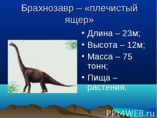 Брахнозавр – «плечистый ящер» Длина – 23м;Высота – 12м;Масса – 75 тонн;Пища – ра