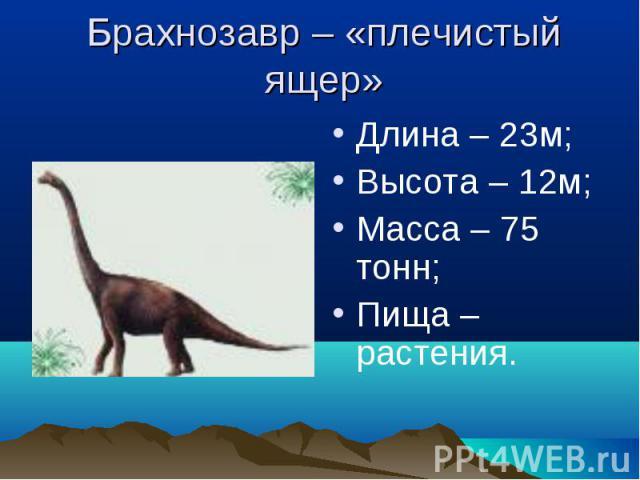 Брахнозавр – «плечистый ящер» Длина – 23м;Высота – 12м;Масса – 75 тонн;Пища – растения.