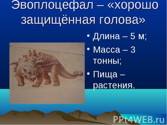Эвоплоцефал – «хорошо защищённая голова» Длина – 5 м;Масса – 3 тонны;Пища – растения.