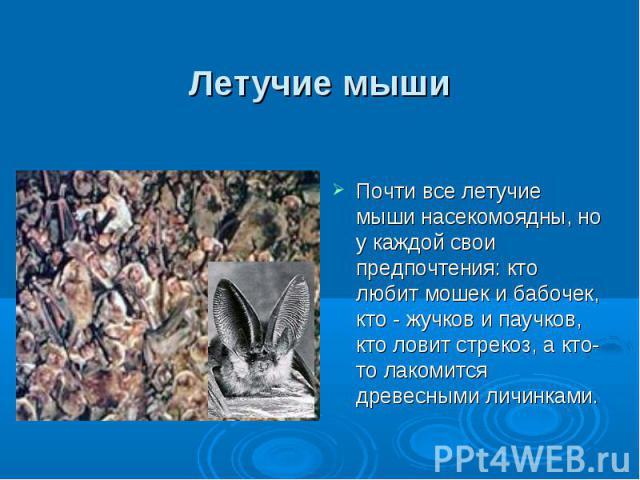 Летучие мыши Почти все летучие мыши насекомоядны, но у каждой свои предпочтения: кто любит мошек и бабочек, кто - жучков и паучков, кто ловит стрекоз, а кто-то лакомится древесными личинками.