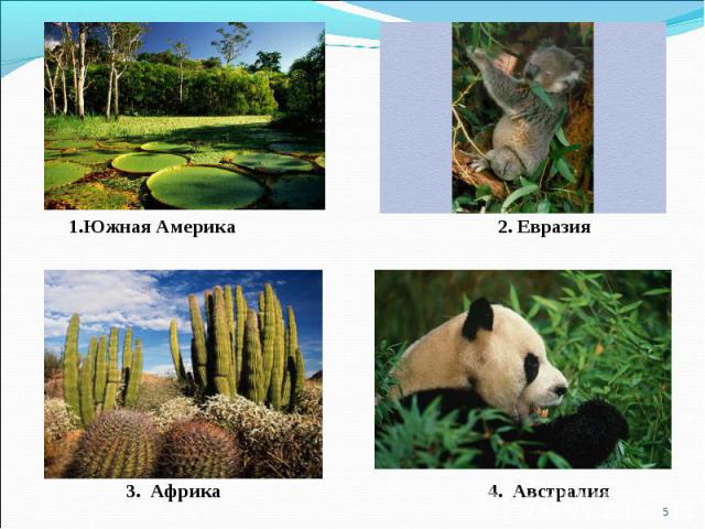 1.Южная Америка 2. Евразия 3. Африка 4. Австралия
