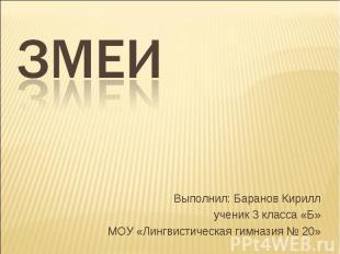 Змеи Выполнил: Баранов Кириллученик 3 класса «Б»МОУ «Лингвистическая гимназия №