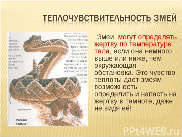 Теплочувствительность змей Змеи могут определять жертву по температуре тела, если она немного выше или ниже, чем окружающая обстановка. Это чувство теплоты даёт змеям возможность определить и напасть на жертву в темноте, даже не видя её!