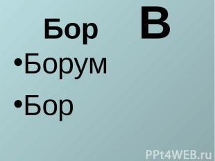 Бор ВБорумБор