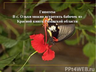 ГипотезаВ с. Ольхи можно встретить бабочек из Красной книги Рязанской области
