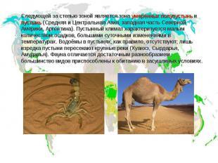 Следующей за степью зоной является зона умеренных полупустынь и пустынь (Средняя