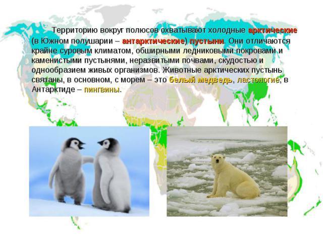 Территорию вокруг полюсов охватывают холодные арктические (в Южном полушарии – антарктические) пустыни. Они отличаются крайне суровым климатом, обширными ледниковыми покровами и каменистыми пустынями, неразвитыми почвами, скудостью и однообразием жи…