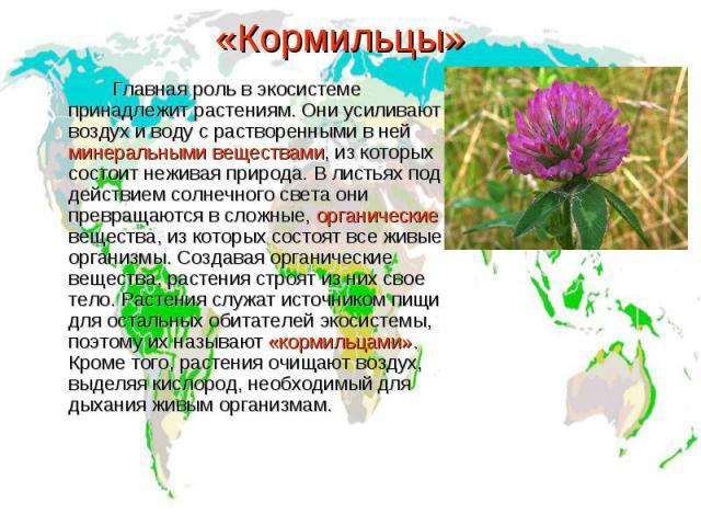 «Кормильцы» Главная роль в экосистеме принадлежит растениям. Они усиливают воздух и воду с растворенными в ней минеральными веществами, из которых состоит неживая природа. В листьях под действием солнечного света они превращаются в сложные, органиче…