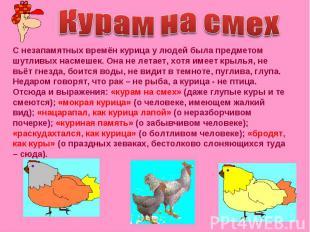 Курам на смех С незапамятных времён курица у людей была предметом шутливых насме