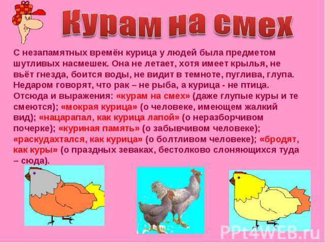 Курам на смех С незапамятных времён курица у людей была предметом шутливых насмешек. Она не летает, хотя имеет крылья, не вьёт гнезда, боится воды, не видит в темноте, пуглива, глупа. Недаром говорят, что рак – не рыба, а курица - не птица. Отсюда и…
