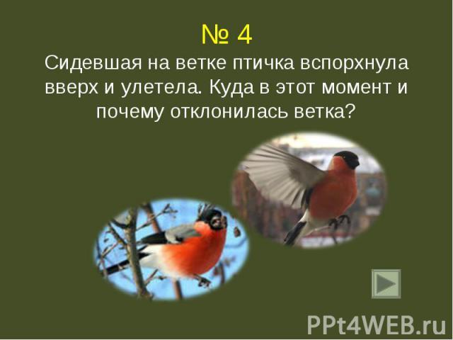 № 4Сидевшая на ветке птичка вспорхнула вверх и улетела. Куда в этот момент и почему отклонилась ветка?