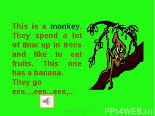 This is a monkey. They spend a lot of time up in trees and like to eat fruits. T