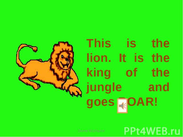 This is the lion. It is the king of the jungle and goes ROAR!