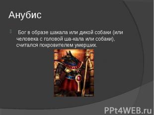 Анубис Бог в образе шакала или дикой собаки (или человека с головой шакала или
