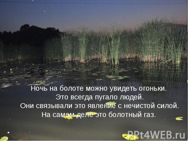 Ночь на болоте можно увидеть огоньки. Это всегда пугало людей. Они связывали это явление с нечистой силой.На самом деле это болотный газ.