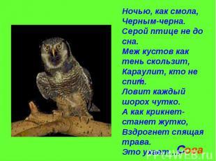 Ночью, как смола,Черным-черна.Серой птице не до сна.Меж кустов как тень скользит