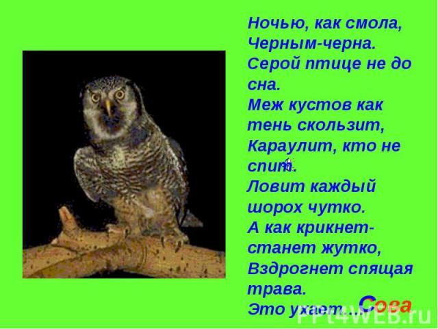 Ночью, как смола,Черным-черна.Серой птице не до сна.Меж кустов как тень скользит,Караулит, кто не спит.Ловит каждый шорох чутко.А как крикнет-станет жутко,Вздрогнет спящая трава.Это ухает….