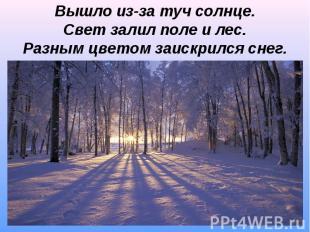 Вышло из-за туч солнце.Свет залил поле и лес.Разным цветом заискрился снег.