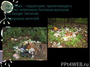 Проблема – территория, прилегающая к посёлку загрязнена бытовым мусором,что вред