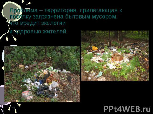 Проблема – территория, прилегающая к посёлку загрязнена бытовым мусором,что вредит экологии и здоровью жителей