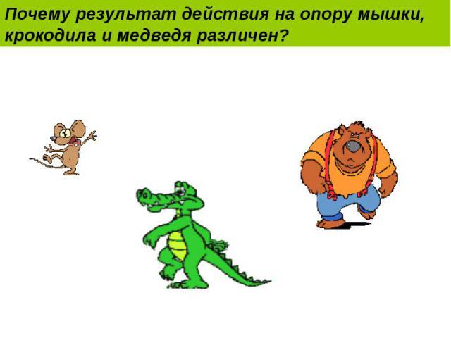 Почему результат действия на опору мышки, крокодила и медведя различен?