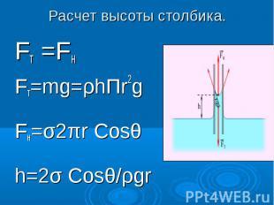 Расчет высоты столбика. Fт =FнFт=mg=ρhΠr2gFн=σ2πr Cosθh=2σ Cosθ/ρgr