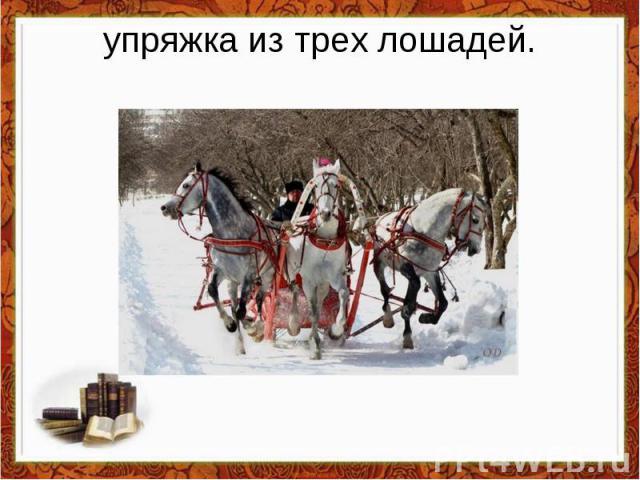 упряжка из трех лошадей.