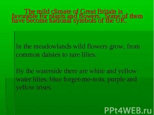 The mild climate of Great Britain is favorable for plants and flowers. Some of t