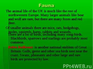 Fauna Thе animal life of the UK is much like the rest of northwestern Europe. Ma
