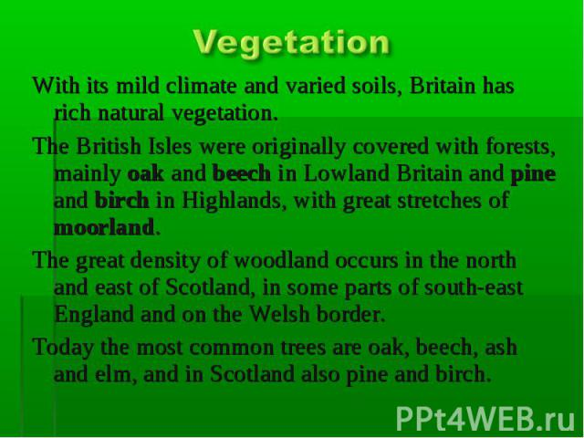Vegetation With its mild climate and varied soils, Britain has rich natural vegetation. The British Isles were originally covered with forests, mainly oak and beech in Lowland Britain and pine and birch in Highlands, with great stretches of moorland…