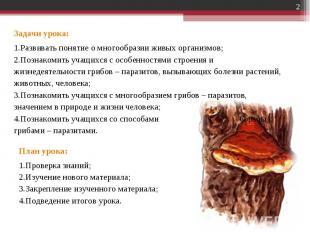 Задачи урока:Развивать понятие о многообразии живых организмов;Познакомить учащи