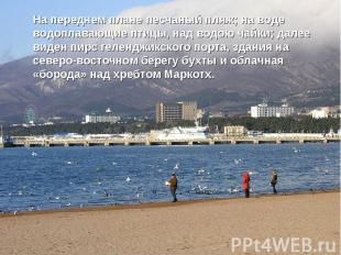 На переднем плане песчаный пляж; на воде водоплавающие птицы, над водою чайки; д