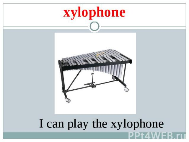 xylophone I can play the xylophone