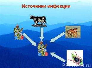 Источники инфекции