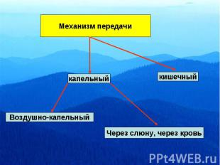 Механизм передачи