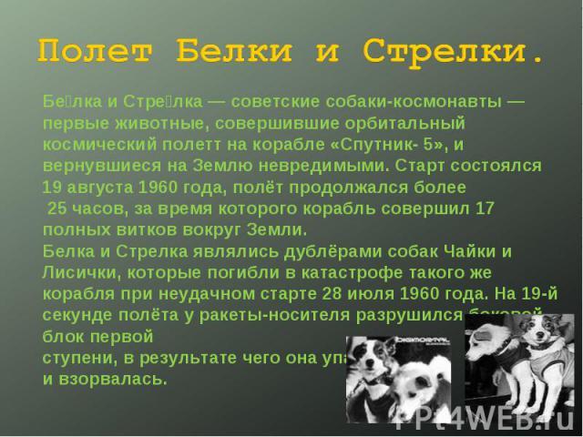 Полет Белки и Стрелки. Белка и Стрелка— советские собаки-космонавты— первые животные, совершившие орбитальный космический полетт на корабле «Спутник- 5», и вернувшиеся на Землю невредимыми. Старт состоялся 19 августа 1960 года, полёт продолжался б…